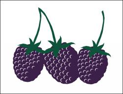 Blackberries Poly Marketeer