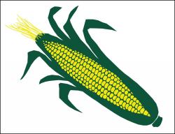 Corn Poly Marketeer