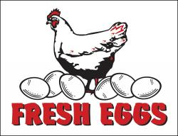Fresh Eggs Poly Marketeer