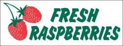 Raspberry Banner Digital