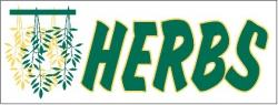 Herbs Banner Digital