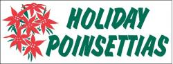 Holiday Poinsettias Banner Digital