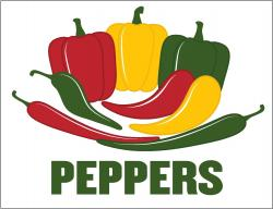 PEPPERS (Item# P26PEPPERS)