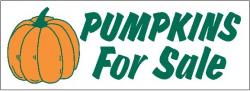 Pumpkin For Sale Banner Digital