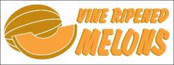 Melons Banner Digital